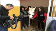 En Lengua de Signos - Claudia, una monitora de equinoterapia con discapacidad auditiva