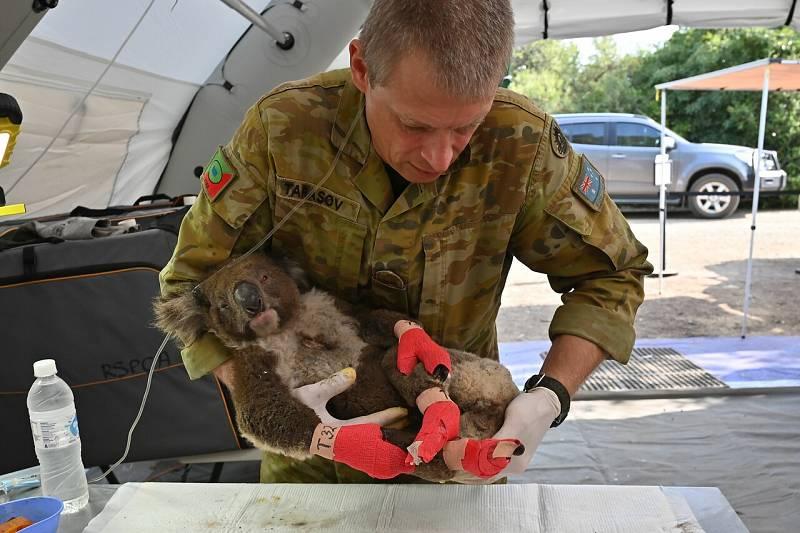 En Australia, los incendios han devastado miles de hectáreas de reservas naturales, que eran el hábitat de especies protegidas, como el koala. Un equipo de TVE ha podido acceder a esas zonas arrasadas por el fuego.