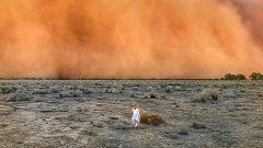Australia sufre el clima extremo con tormentas de arena, granizo e inundaciones