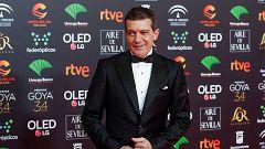 """Premios Goya - Antonio Banderas: """"No siento presión por mí sino por estar en Málaga"""""""