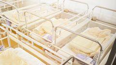 La Mañana - Decenas de afectados por la situación de los bebés robados se reivindican