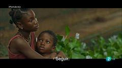 Punts de vista - Reportatge sobre la pel·lícula 'Adú', de Salvador Calvo