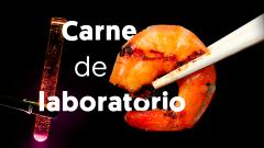 Crean camarones de laboratorio aptos para el consumo humano en Singapur