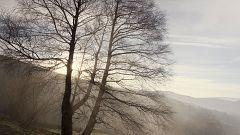 Nieblas que podrían ser localmente persistentes en ambas mesetas