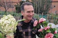 Aquí la tierra - Las flores de la coliflor