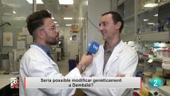 El Rondo - Dembélé i les lesions