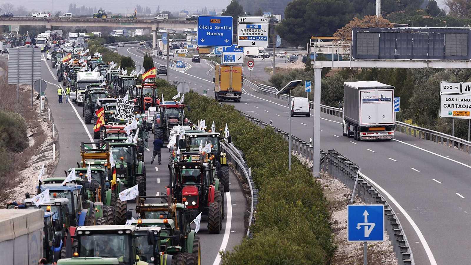 Miles de agricultores organizan una tractorada para protestar por los bajos precios agrarios