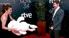 Corazón - Amaia Romero y su nuevo novio Álex de Lucas se conocieron gracias a unos Javis 'celestinos'