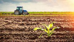 A partir de hoy - ¿Hay solución para la crisis que sufre nuestra agricultura?