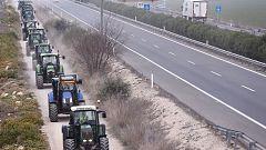 Los agricultores denuncian que las importaciones empujan los precios a la baja