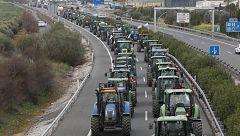 Tractoradas en Granada, protestas en A Coruña y un encierro en Pamplona por el futuro del campo
