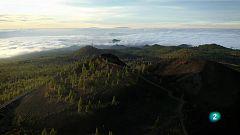 La aventura del saber. Tenerife frente al cambio climático