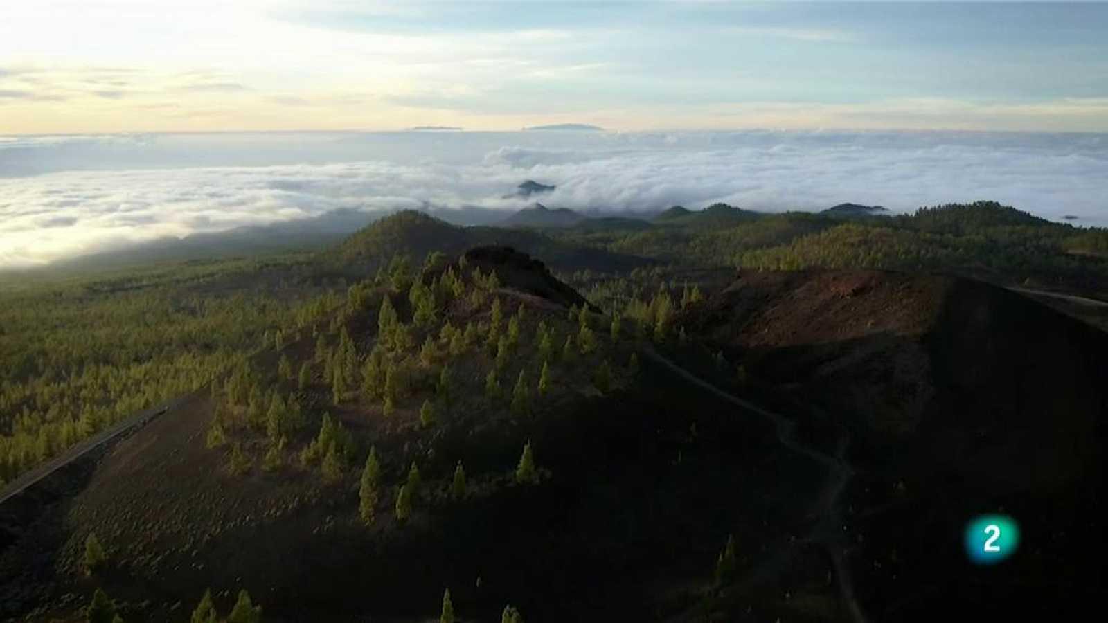 La aventura del saber Tenerife frente al cambio climático convención Marco de Naciones Unidas
