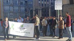 El olivar pierde tres millones de euros al día, según la COAG
