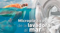 Microplásticos: de la lavadora al mar