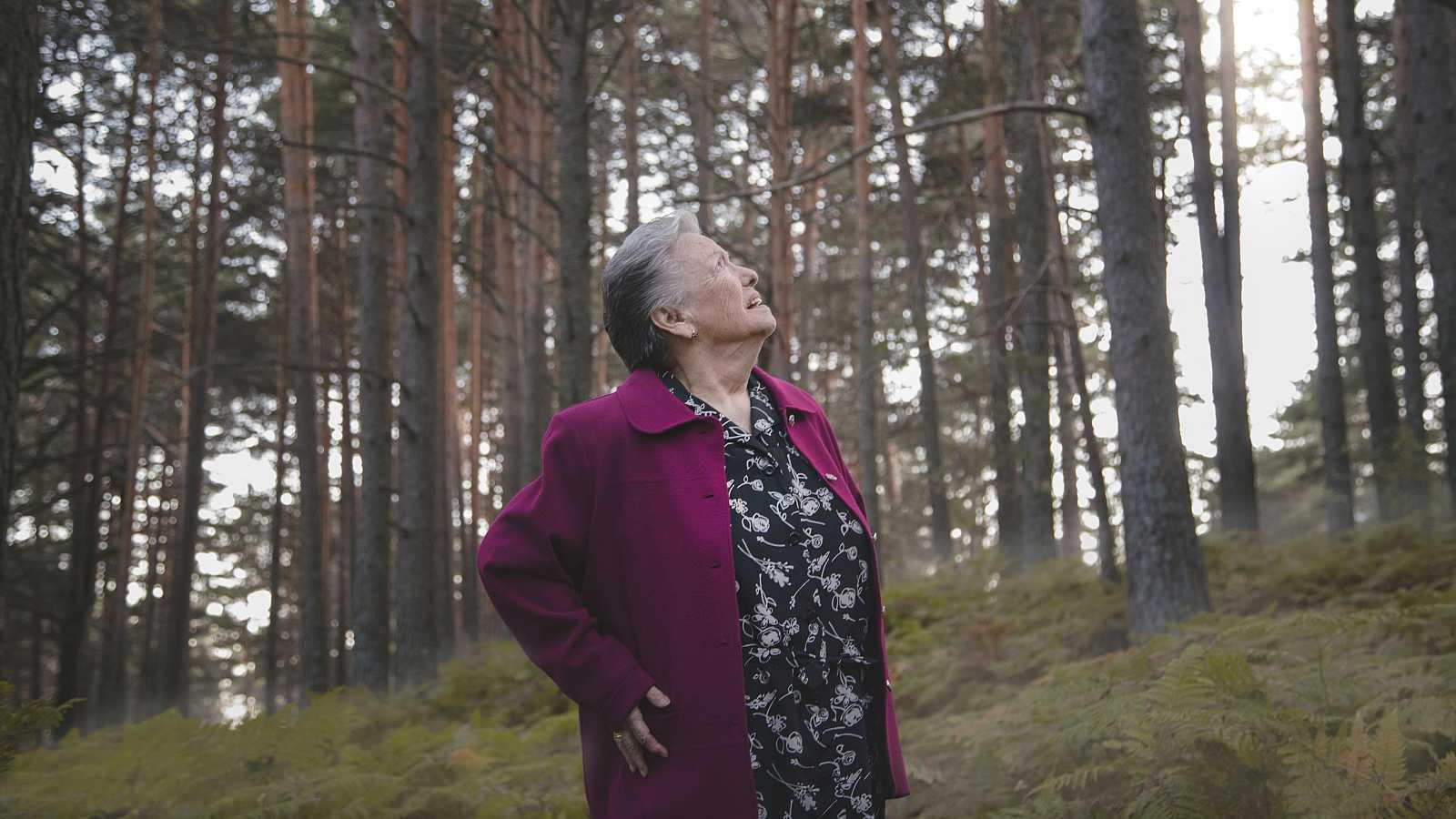 Cuéntame cómo pasó - Las primeras imágenes desvelan que Herminia se pierde en el bosque