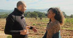 Aquí la tierra - Un viñedo de excepción y ecológico en Ibiza