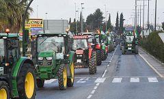 El Gobierno aprueba un paquete de medidas en beneficio del sector del campo