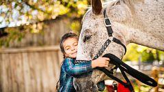 España Directo - Terapia con caballos