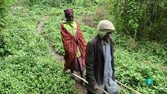 La tribu pigmea de Batwa propone conservar y replantar las semillas