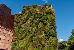 España Directo -  La moda de los jardines verticales