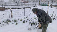 Aquí la tierra - Una huerta blanca por la nieve
