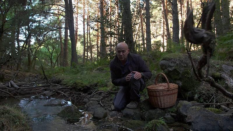 El señor de los bosques - Braojos de la Sierra (Madrid) - ver ahora