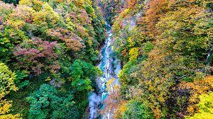 Tohoku, el Japón salvaje