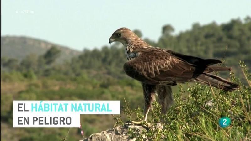 El hábitat natural en peligro