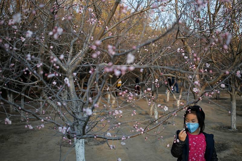 Mensaje de esperanza desde China