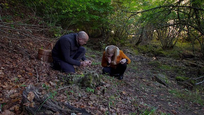 El señor de los bosques - Bernesga (León) - ver ahora