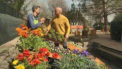 """Aquí la Tierra - Cómo tener un jardín portátil y """"reciclado"""""""