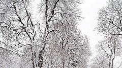 El riesgo por nevadas afectará a cinco provincias del sureste