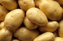 España Directo - Patatas para la cuarentena