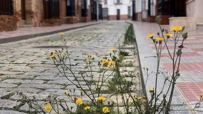 Diario de un confinamiento: en la calle de la Fe