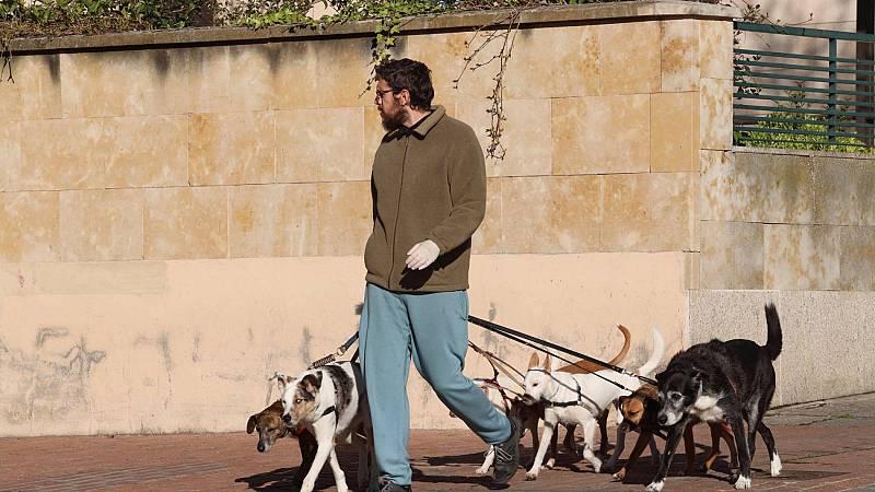 Mascotas: la mejor compañía durante el confinamiento