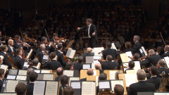 Los conciertos de La 2 - Filarmónica de Viena. Madrid 2011