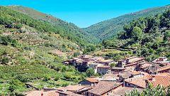 80 cm - Sierra de Gata