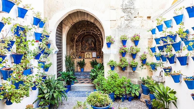 Los patios de Córdoba se podrán visitar de forma virtual