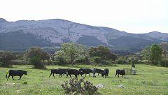 Aquí la tierra - El Mantecas, pionero de lo ecológico