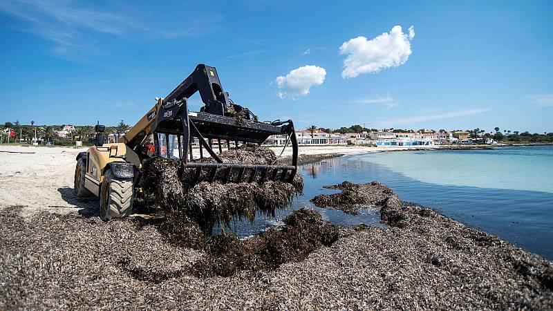 Los ecologistas de Baleares critican con dureza las medidas del Govern para reactivar el turismo