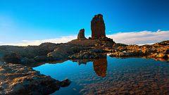 80 cm - Gran Canaria