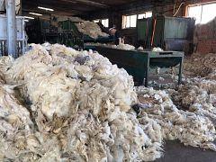 España Directo - Nos colamos en un lavadero de lana tradicional