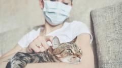 La cadena de contagio del coronavirus