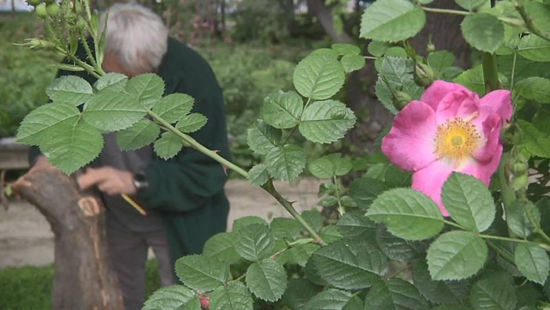 Jardín Botánico, un lugar que cuidar