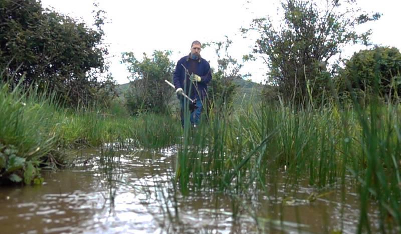 Los pastores del agua