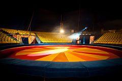 España Directo - Un circo confinado en San Martín de la Vega