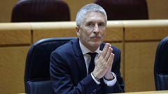 """Marlaska dice que no dimitirá porque no hubo """"injerencia alguna"""" en la investigación del 8M"""