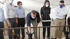 Los reyes Felipe y Letizia visitan la granja de cabras Vega de San Martín en apoyo al sector agroganadero