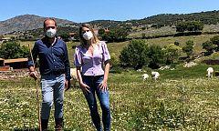 Aquí la tierra - La charolesa, la vaca perfecta